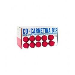 Cocarnetina B12 soluzione orale 10 flaconi 10 ml