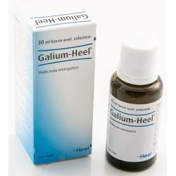 Galium Gocce 30 ml